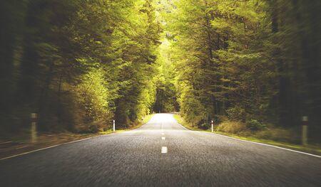 scenics: Road Travel Journey Nature Scenics Concept