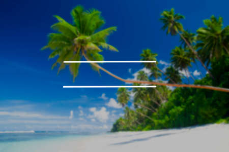corall: Copy Space Blank Summer Vacation Holiday Concept