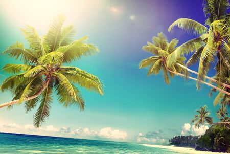 seascape: Tropical Paradise Beach Seascape Travel Destination Concept
