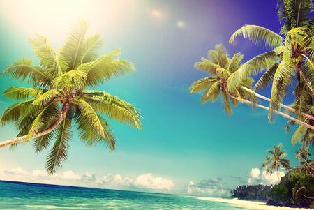 seascape: Tropical Paradise Beach Seascape Travel Destination Concept