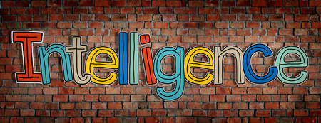 single word: Intelligence Brick wall Single Word Text Background Clean Concept
