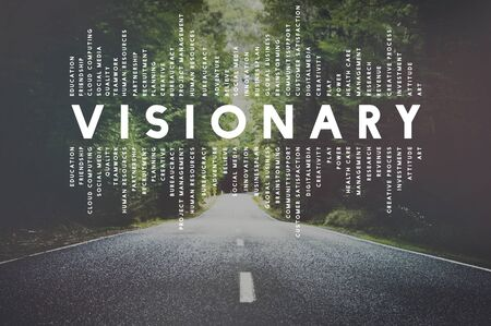 strategist: Visionary Vision Introspective Strategist Concept