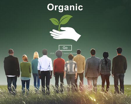 freshness: Organic Food Healthy Lifestyle Freshness Natural Agriculture Concept