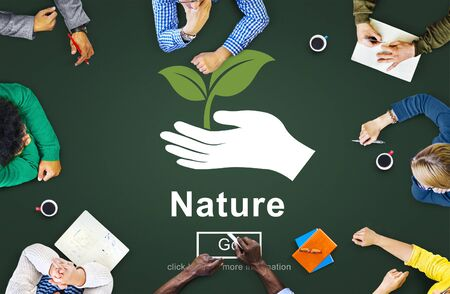 environmental conservation: Nature Ecology Environmental Conservation Natural Life Concept