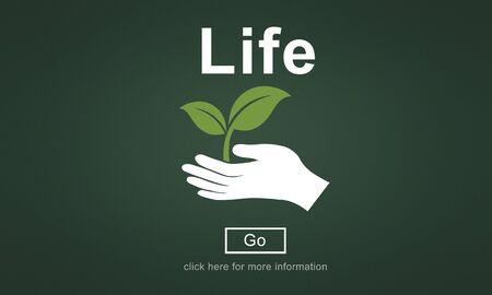 an ecosystem: Life Ecosystem Conserve Environment Concept