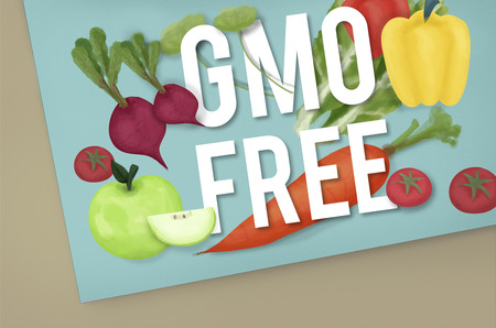 genetically: GMO Free Genetically Modified Organism Healthy Concept Stock Photo