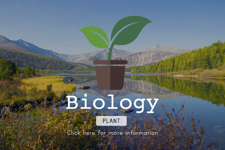 environmental conservation: Biology Science Environmental Conservation Nature Concept Stock Photo