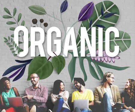 El cultivo orgánico de crecimiento nuevo concepto natural de la salud Foto de archivo