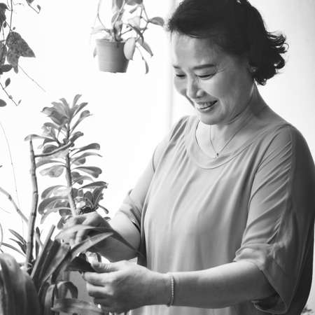 Planting Plantation Growth Housewife Activity Concept Stock Photo
