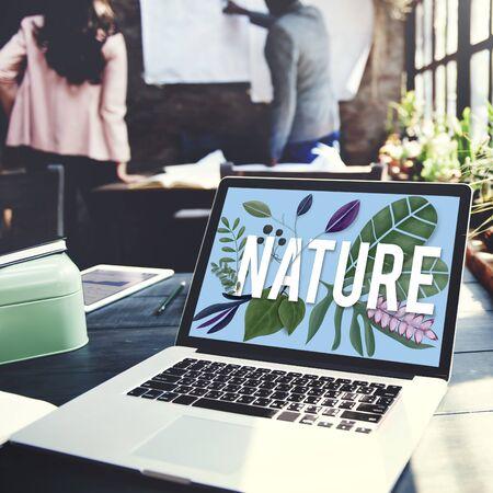 botanic: Nature Flower Botanic Plants Concept Stock Photo