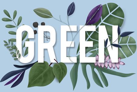 green environment: Nature Environment Green Earth Growth Natural Concept Stock Photo