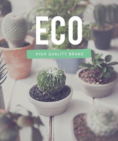 environmentally friendly: Eco Ecology Environmentally Friendly Hobby Concept