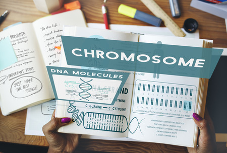 Chromosome concept in a book Stock Photo