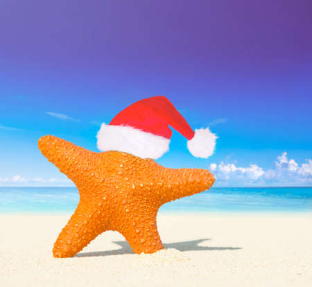christmas tide: Wonderful Christmas on the beach.