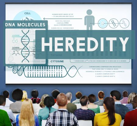 heredity: Heredity Biology Chromosome Molecular Science Concept
