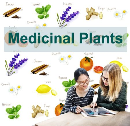 complementary therapies: Medicinal Plants Natural Cure Herb Herbalism Concept