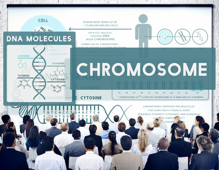Chromosome concept with audience 写真素材