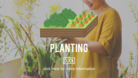 mature adult: Plant Planting Agriculture Farm Farming Concept Stock Photo