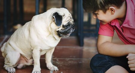 playful: Boy Playful Doggy Friend Togetherness Concept