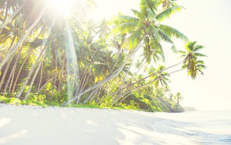 idyllic: Idyllic beach