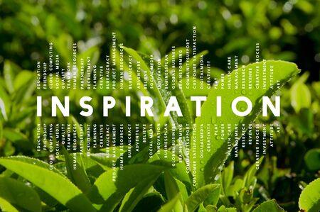 day dream: Inspiration Dream Imagination Creative Inspire Concept Stock Photo