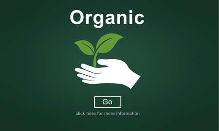 frescura: Los alimentos orgánicos estilo de vida saludable Frescura Concepto Agricultura Natural
