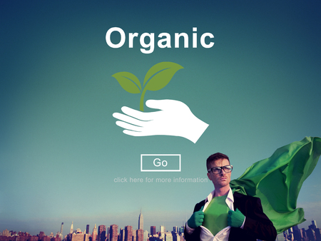 natural forces: Organic Food Healthy Lifestyle Freshness Natural Agriculture Concept