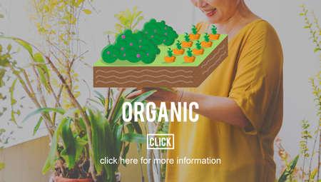 planting: Organic Farm Farming Planting Grow Concept