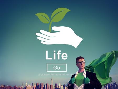 ecosystem: Concepto del ambiente Conserve la vida de los Ecosistemas