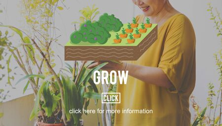 planting: Grow Gardening Farming Planting Land Concept Stock Photo
