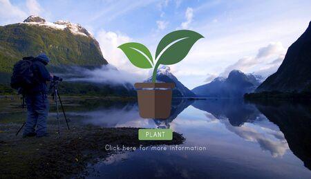 blue lagoon: Green Nature Plant Gardening Concept Stock Photo