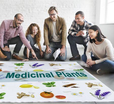 plantas medicinales: Las plantas medicinales curación natural de la hierba Concepto herboristería