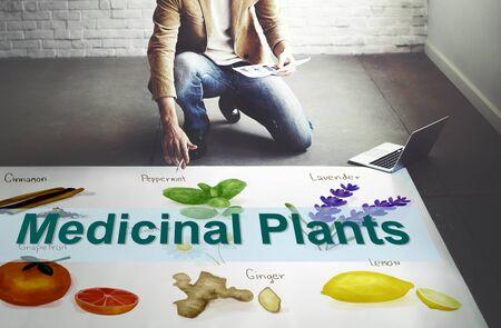 plantas medicinales: Las plantas medicinales curaci�n natural de la hierba Concepto herborister�a