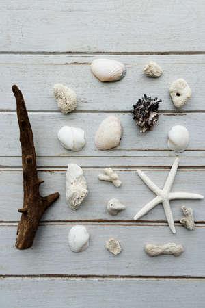 Starfish Summer Holiday Vacation Beach Concept Stock Photo