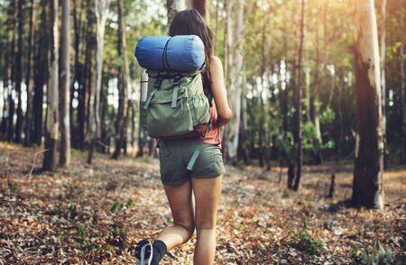 wanderlust: Wanderlust Pigeon Traveler Lifestyle Nature Trip Concept