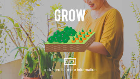 asian gardening: Grow Gardening Farming Planting Land Concept Stock Photo