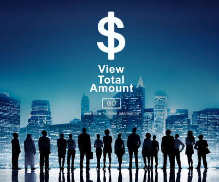 group  accountant: View Total Amount Accountant Balance Record Concept