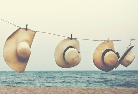 coastline: Hanging Hat Beach Coastline Concept