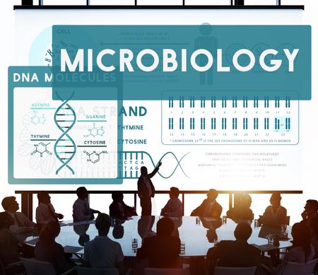 microbiologia: Las bacterias Microbiología Enfermedad Enfermedad Laboratorio Concepto