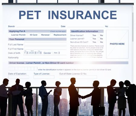 animal doctor: Pet Insurance Form Animal Doctor Concept