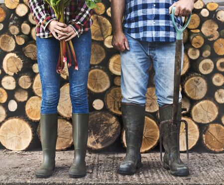 Firewood Fuelwood Lumber Timber Lumber Log Concept
