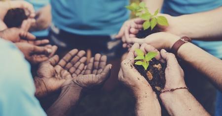 Gruppo di volontari con germogli per la crescita