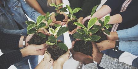 Diverse People Hands Hold Plants Nature Stock fotó