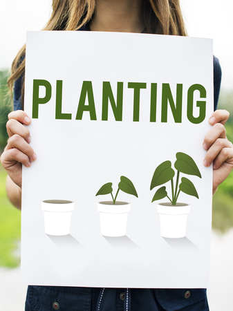 Planting Gardening Flower Farm Global Stock Photo