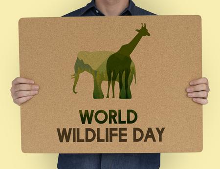 World Wildlife Day Animal Species Environmental Stock Photo