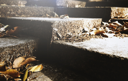 strong: Dried Leaves on Cement Steps Nature Stock Photo