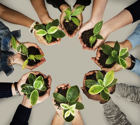 People holding plant shoots with soil Imagens