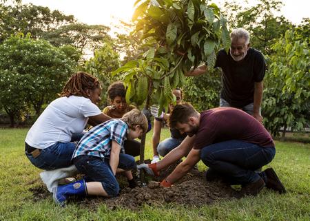 사람들의 그룹 나무를 함께 야외에서 공장 스톡 콘텐츠