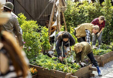 Groep die mensen groente in serre planten Stockfoto - 76705928