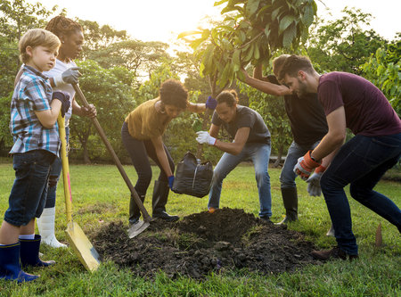 Group of people plant a tree together outdoors Stockfoto